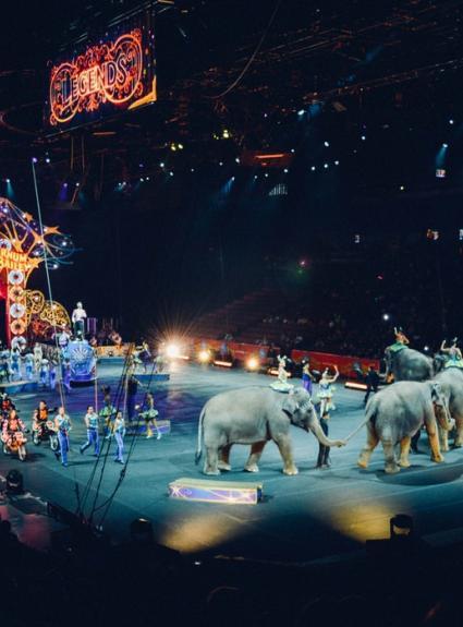 Découvrez le Cirque d'Hiver à Paris